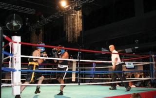 Boxing at EXDO